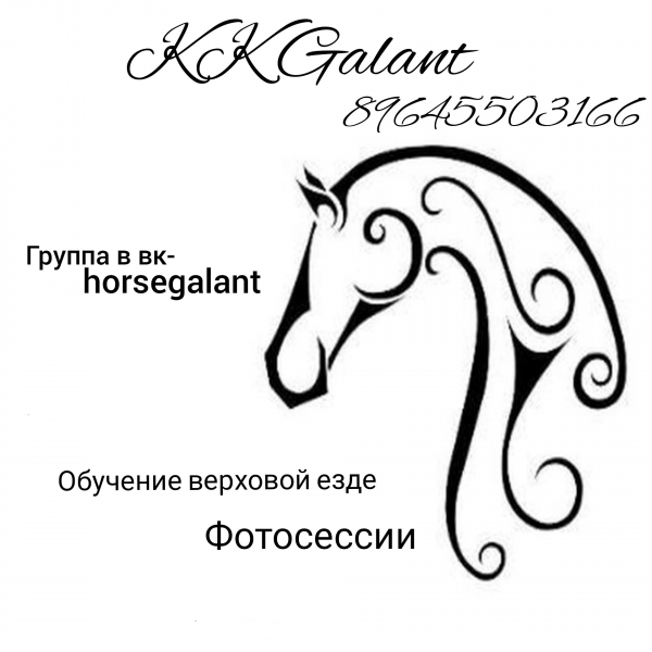 Логотип компании Galant